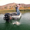 Lake Havasu Fishing Report