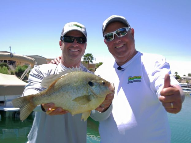 Lake Havasu Fishing Reports