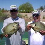 Lake Havasu Fishing Report