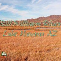 Bill Williams River Lake Havasu